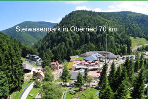 Steiwasenpark in Oberried 70 km